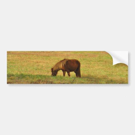 Brown miniature Pony Bumper Sticker