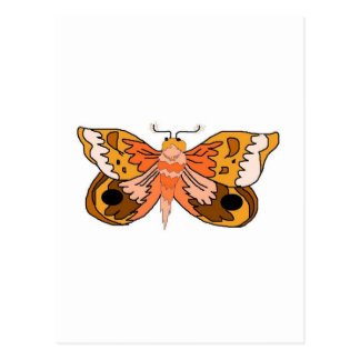Brown Moth Post Card