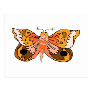 Brown Moth Postcard