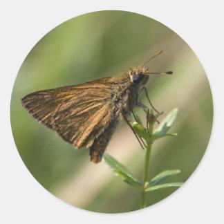 brown moth round sticker