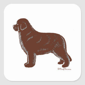 Brown Newfoundland Dog Square Sticker