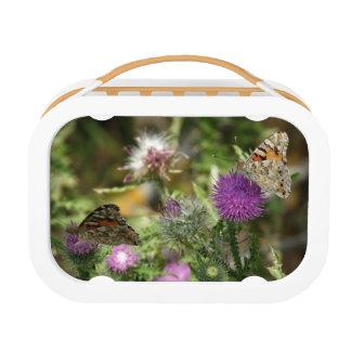 Brown Orabge Butterflies Nature  Lunchbox, Orange Lunch Box