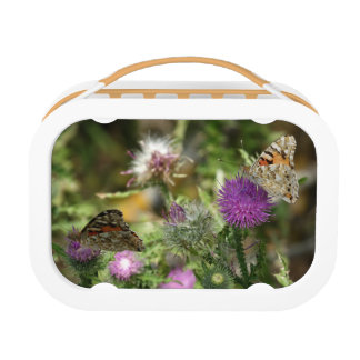 Brown Orabge Butterflies Nature  Lunchbox, Orange Lunch Boxes