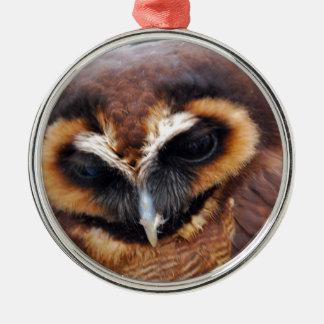 Brown Owl Christmas Ornament