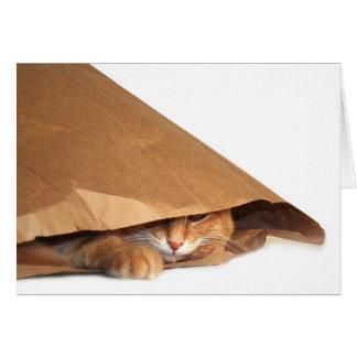 Brown paper bag cat card