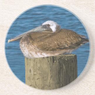 Brown Pelican Coaster Drink Coaster