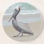 Brown Pelican on Beach Coasters