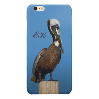 Brown Pelican Perching on a Post, Monogram iPhone 6 Plus Case