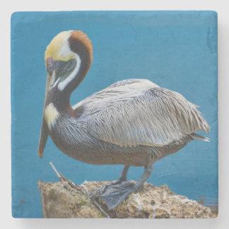 Brown Pelican Stone Beverage Coaster