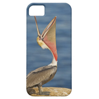 Brown Pelican with mouth open Case For The iPhone 5