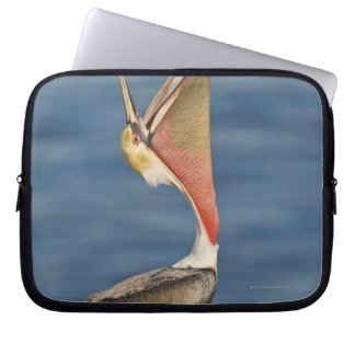 Brown Pelican with mouth open Laptop Sleeve