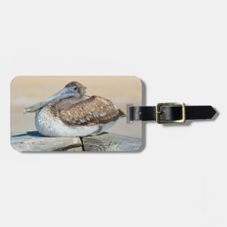 Brown Pelicans on a dock Luggage Tag