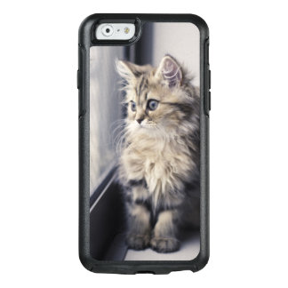 Brown Persian Kitten Looking Out Window OtterBox iPhone 6/6s Case