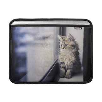 Brown Persian Kitten Looking Out Window Sleeve For MacBook Air