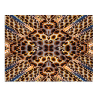 Brown pheasant feather kaleidoscope postcard