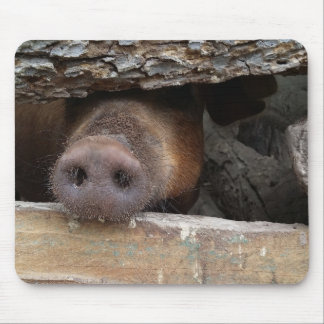 Brown Pig with Nose through Fence Mouse Pad