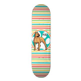 Brown Pit bull; Bright Rainbow Stripes Skate Board Decks