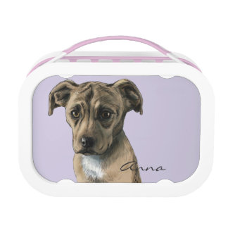 Brown Pit Bull Puppy Drawing Lunch Box