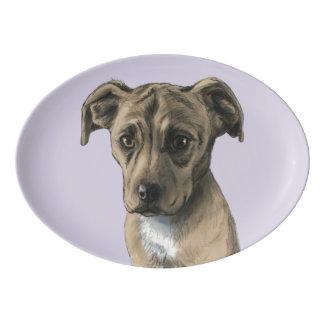 Brown Pit Bull Puppy Drawing Porcelain Serving Platter