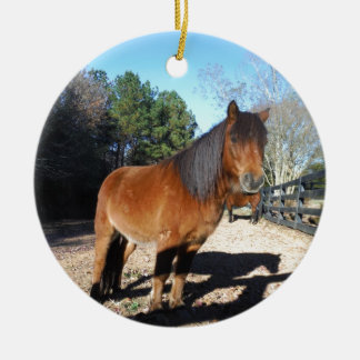 Brown pony turquoise Sky Christmas Ornament