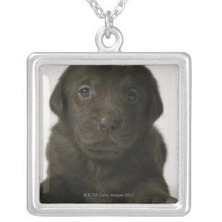 Brown puppy, portrait, close-up square pendant necklace