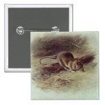 Brown Rat  1918 15 Cm Square Badge