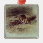 Brown Rat  1918 Silver-Colored Square Decoration