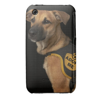 Brown rescue dog with adopt me vest iPhone 3 Case-Mate cases