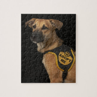 Brown rescue dog with adopt me vest jigsaw puzzle