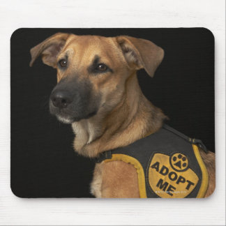 Brown rescue dog with adopt me vest mouse pad