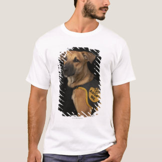Brown rescue dog with adopt me vest T-Shirt
