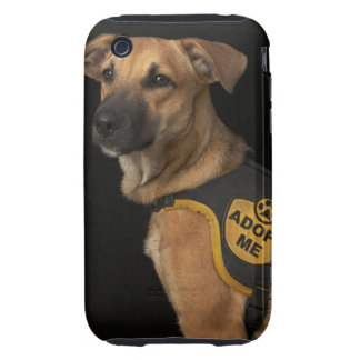 Brown rescue dog with adopt me vest tough iPhone 3 cases