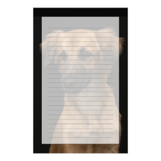 Brown resuce dog with black nose on black stationery