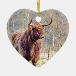 Brown scottish highlander cow standing in spring ceramic heart decoration
