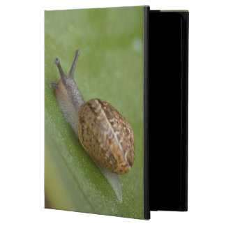 Brown snail on dew covered leaf cover for iPad air