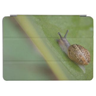 Brown snail on dew covered leaf iPad air cover