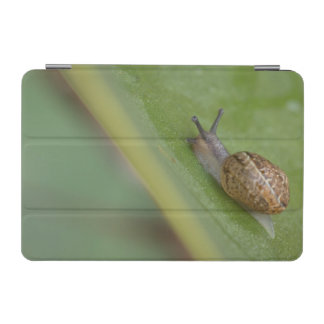 Brown snail on dew covered leaf iPad mini cover
