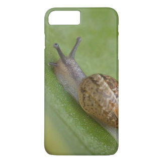 Brown snail on dew covered leaf iPhone 8 plus/7 plus case