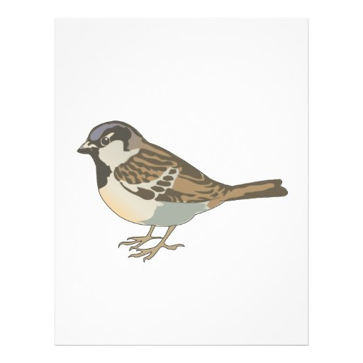 brown sparrow flyers