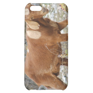 Brown spotted goat iPhone 5C cases