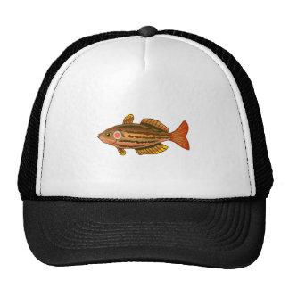 Brown Striped Fish Mesh Hat