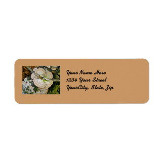 Brown Striped Shelf Fungi Items Return Address Label