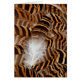 Brown Stripepd Feather Abstract Card