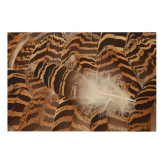 Brown Stripepd Feather Abstract Wood Wall Decor