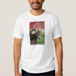 Brown Swiss Cow T-shirts