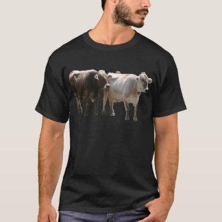 Brown Swiss Cows T-Shirt