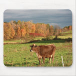 Brown Swiss Mouse Pad