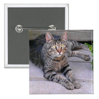 Brown Tabby Cat 15 Cm Square Badge