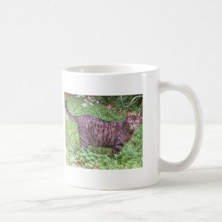 Brown Tabby Cat Basic White Mug