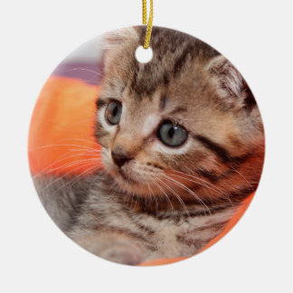 BROWN TABBY KITTEN ORNAMENT